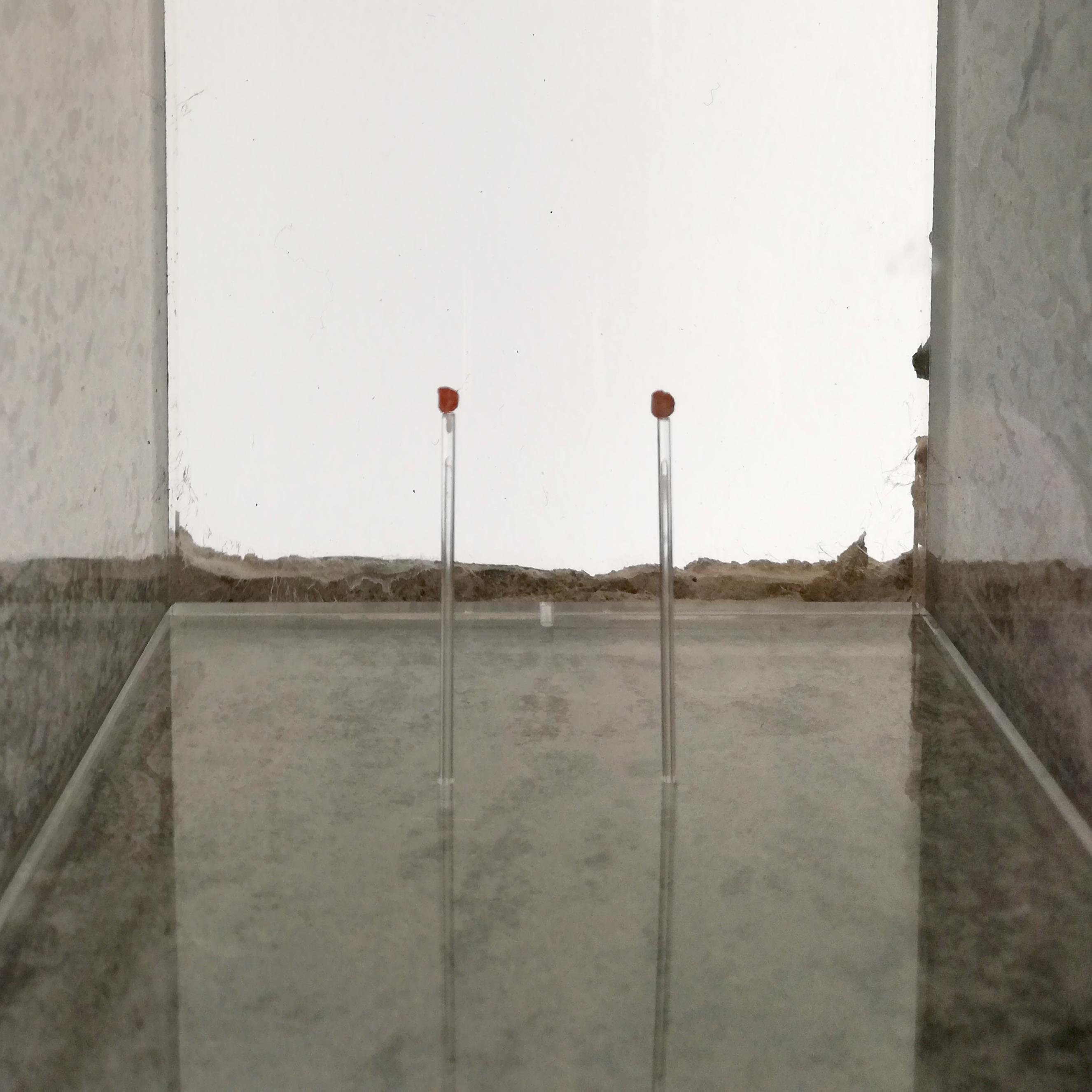 Essere vento, 2015 © Thierry Morturier / Dircom UGA