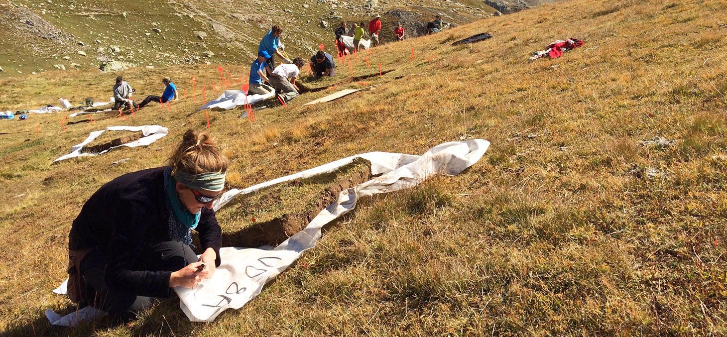 Une équipe internationale du laboratoire d'écologie alpine découpe et marque les 40 parcelles sur les pentes du Galibier