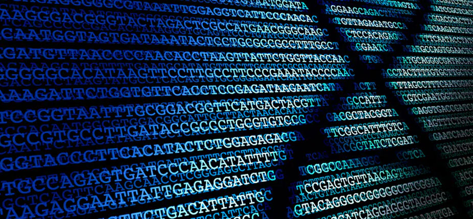 Une séquence d'ADN. © Enzozo / Shutterstock