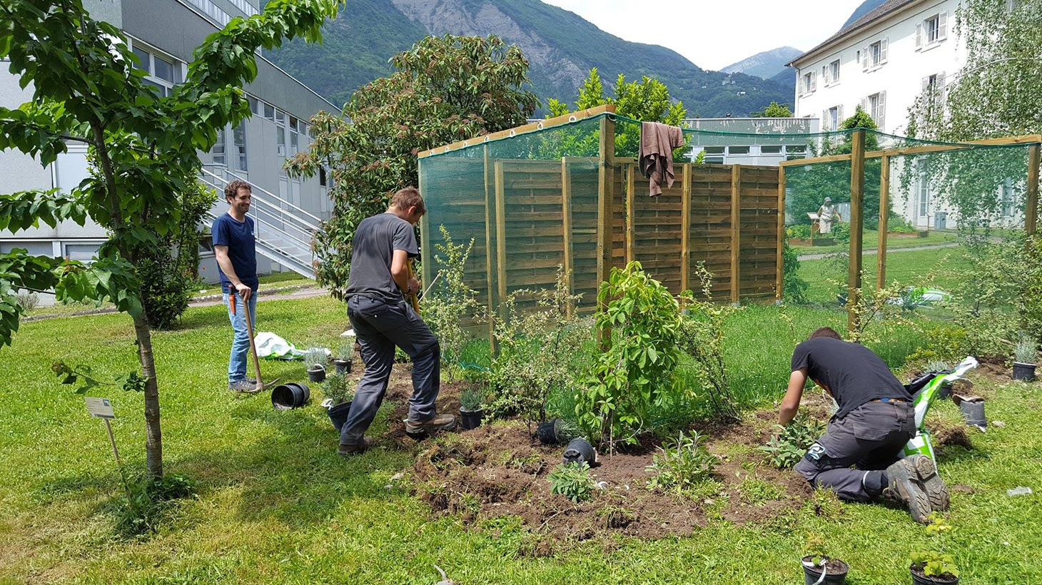 Plantation d'espèces mellifères aux abords du rucher par les élèves du lycée horticole (LEGTa) Grenoble - St Ismier
