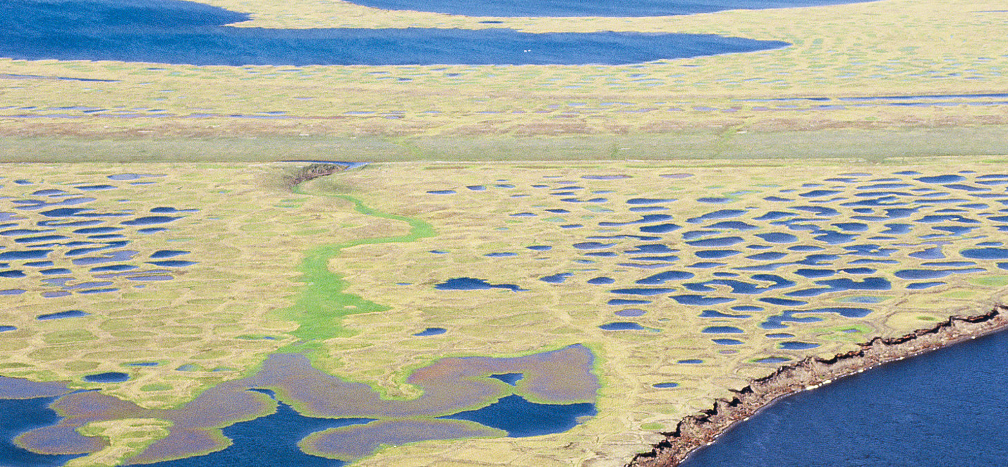 Mares de Thermokarst, delta du Lena, Sibérie © GRID-Arendal