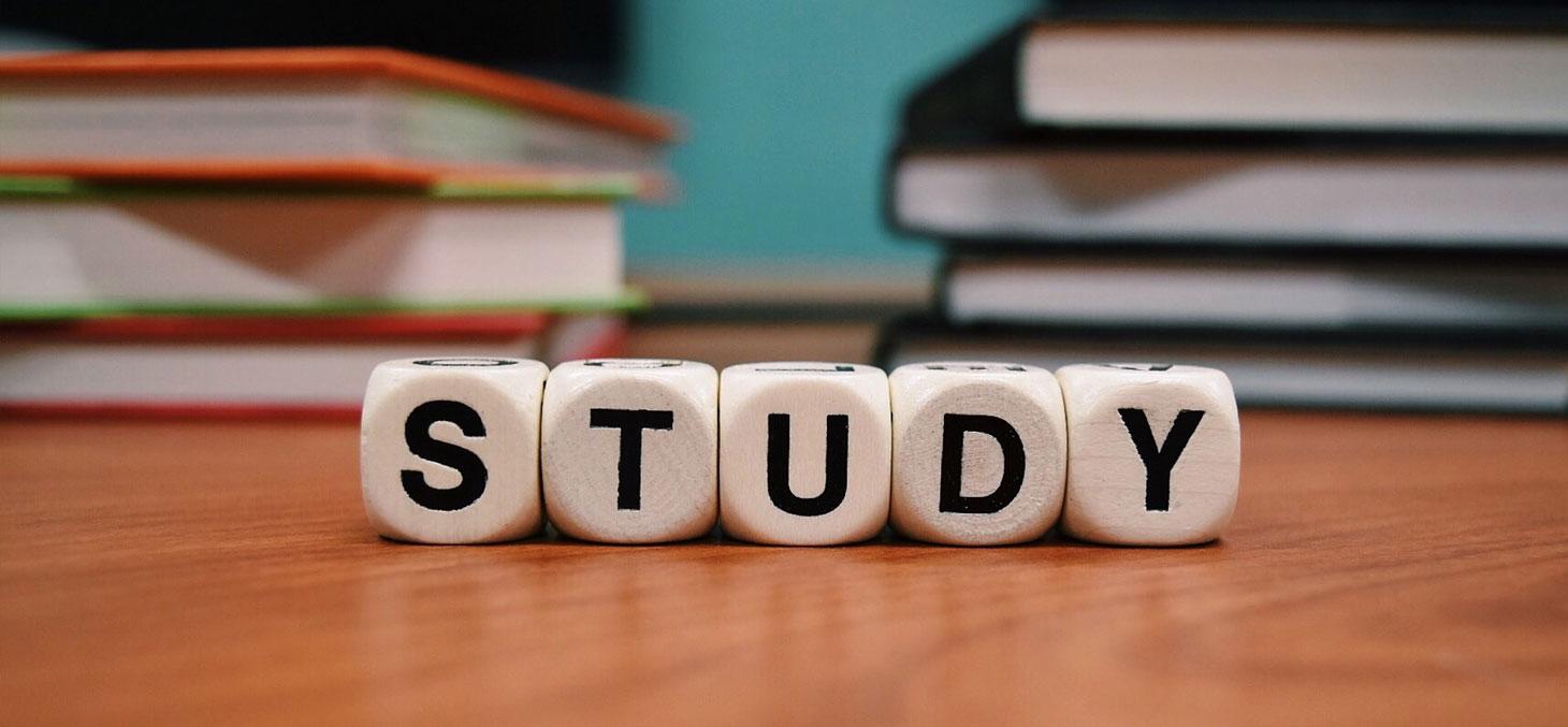 Étudier dans une autre langue, en ayant appris cette langue… Mais comment ? © Pixabay