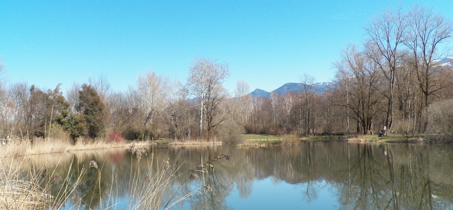 ENS Marais de Monfort - Wikicommons