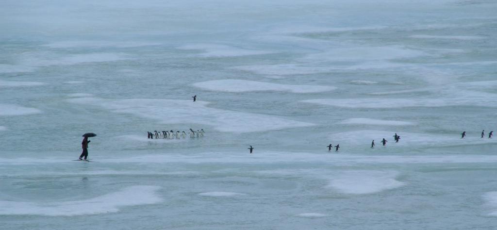 Temps de pluie et de fonte des glaces sur la banquise de la terre Adélie (Antarctique) lors du passage d'une rivière atmosphérique © Bruno Jourdain
