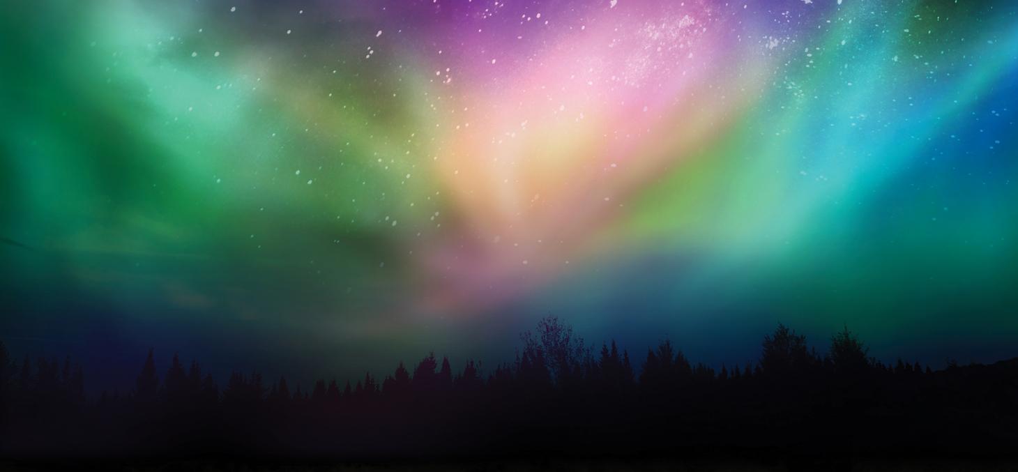 Une aurore boréale sur la forêt canadienne
