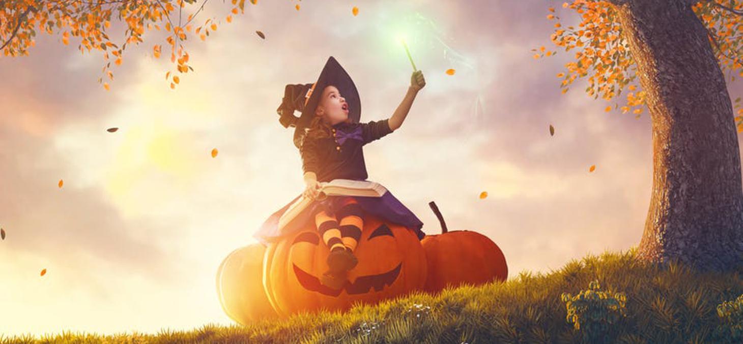 """La figure de la bonne sorcière se diffuse à partir de 1900 et de la publication du """"Magicien d'Oz"""". Shutterstock"""
