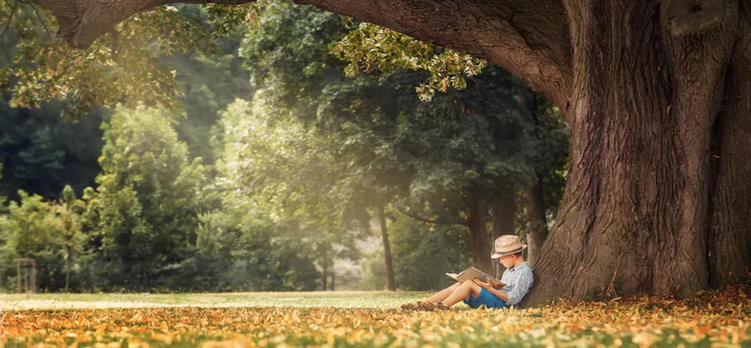 Les deux mois de confinement interrogent les rythmes et lieux d'apprentissage. Shutterstock