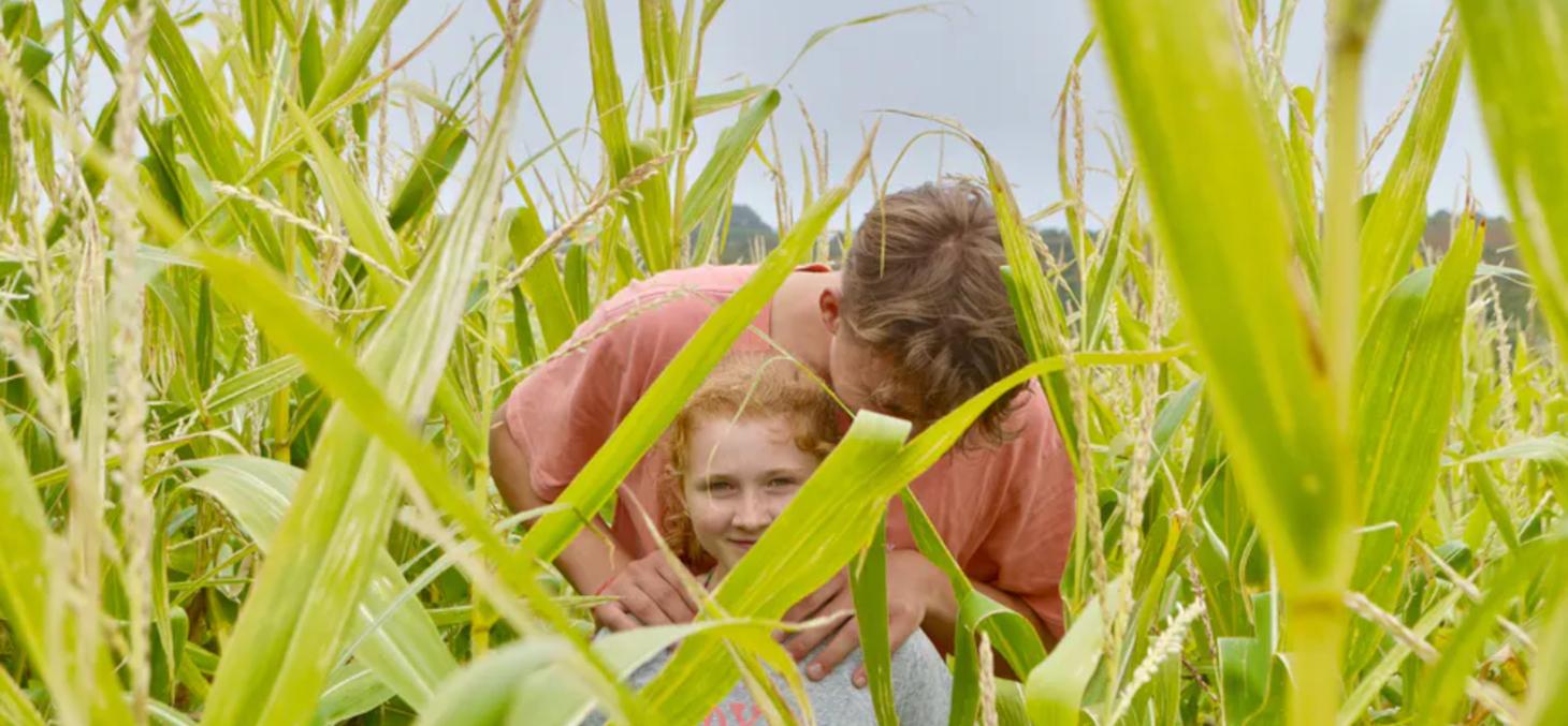 L'espace rural accueille une diversité de réalités. Clarisse Croset/Unsplash