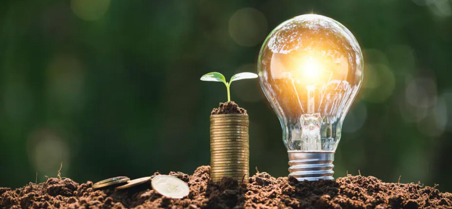 Certaines entreprises tentent de prendre en compte les enjeux écologiques de leurs activités via un compte de résultat environnemental. Shutterstock