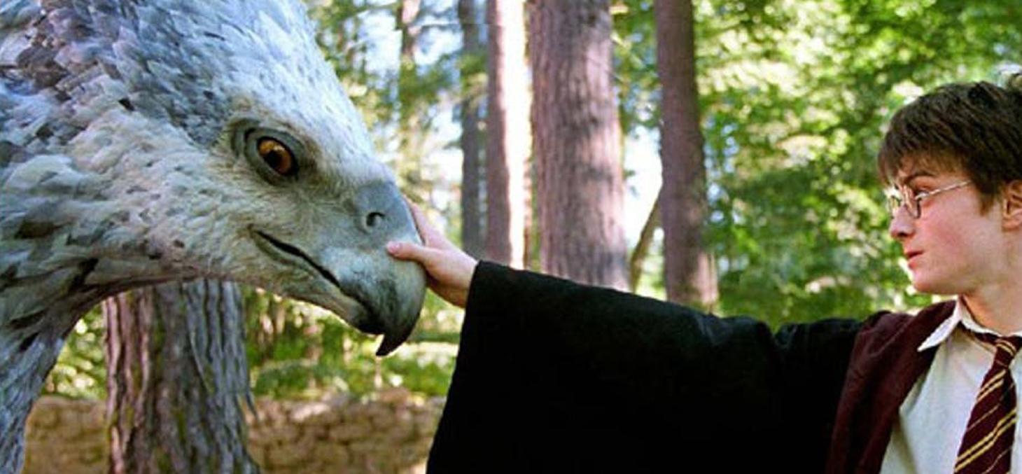 Nombre de créatures magiques de la saga viennent de la mythologie antique. (Ici, le héros apprivoisant un hippogriffe dans l'adaptation d'Harry Potter et le prisonnier d'Azkaban) / Warner Bros