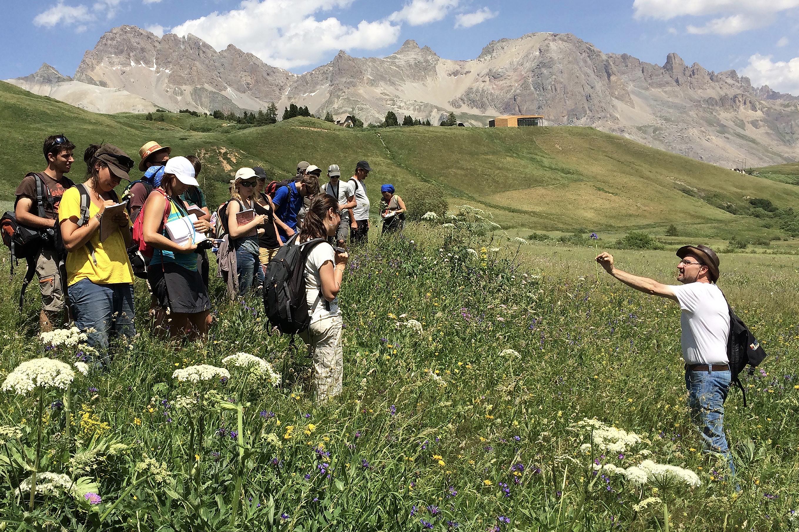 Stage de botanique et d'écologie au jardin alpin du Lautaret