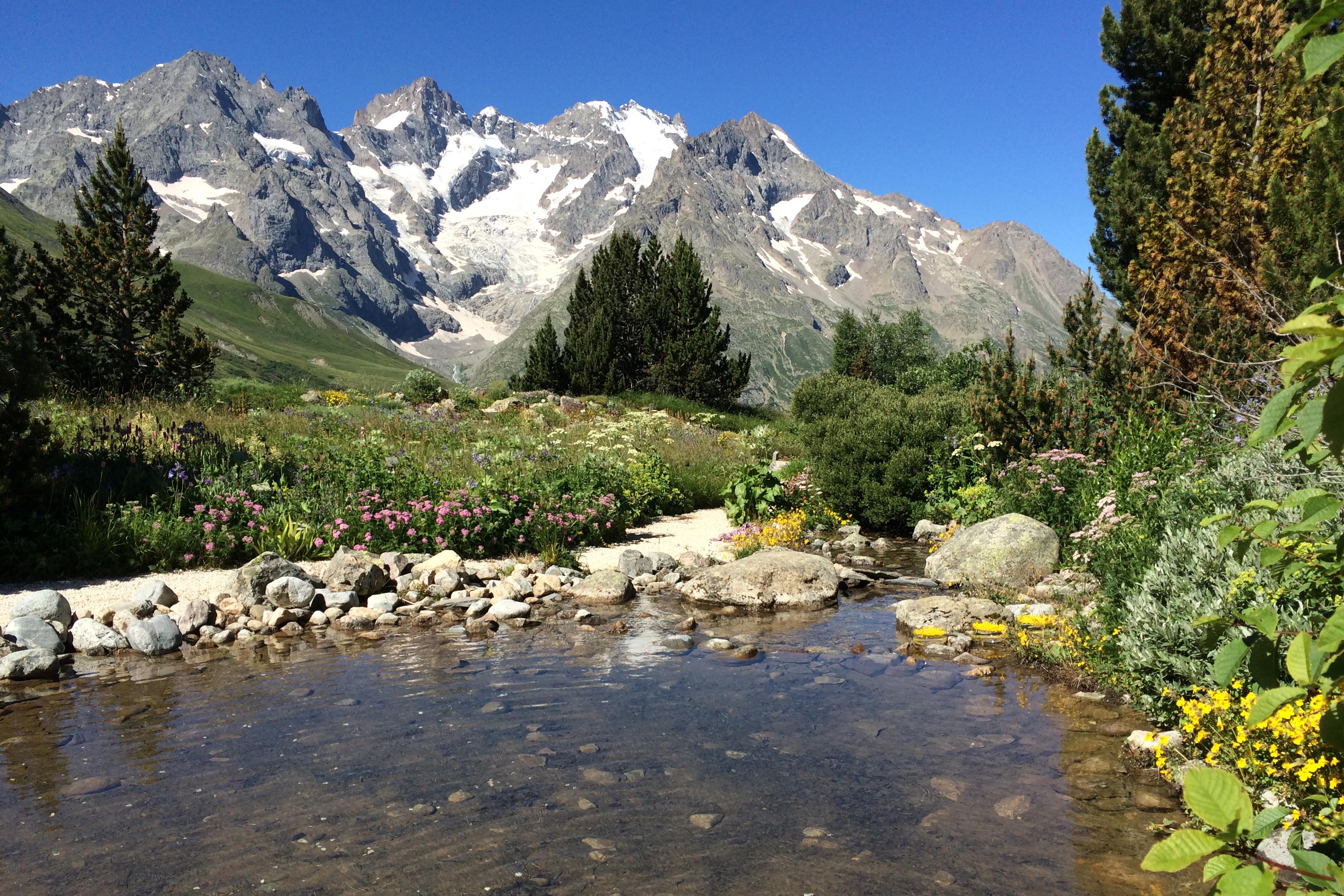 Le lac artificiel du Jardin alpin du Lautaret