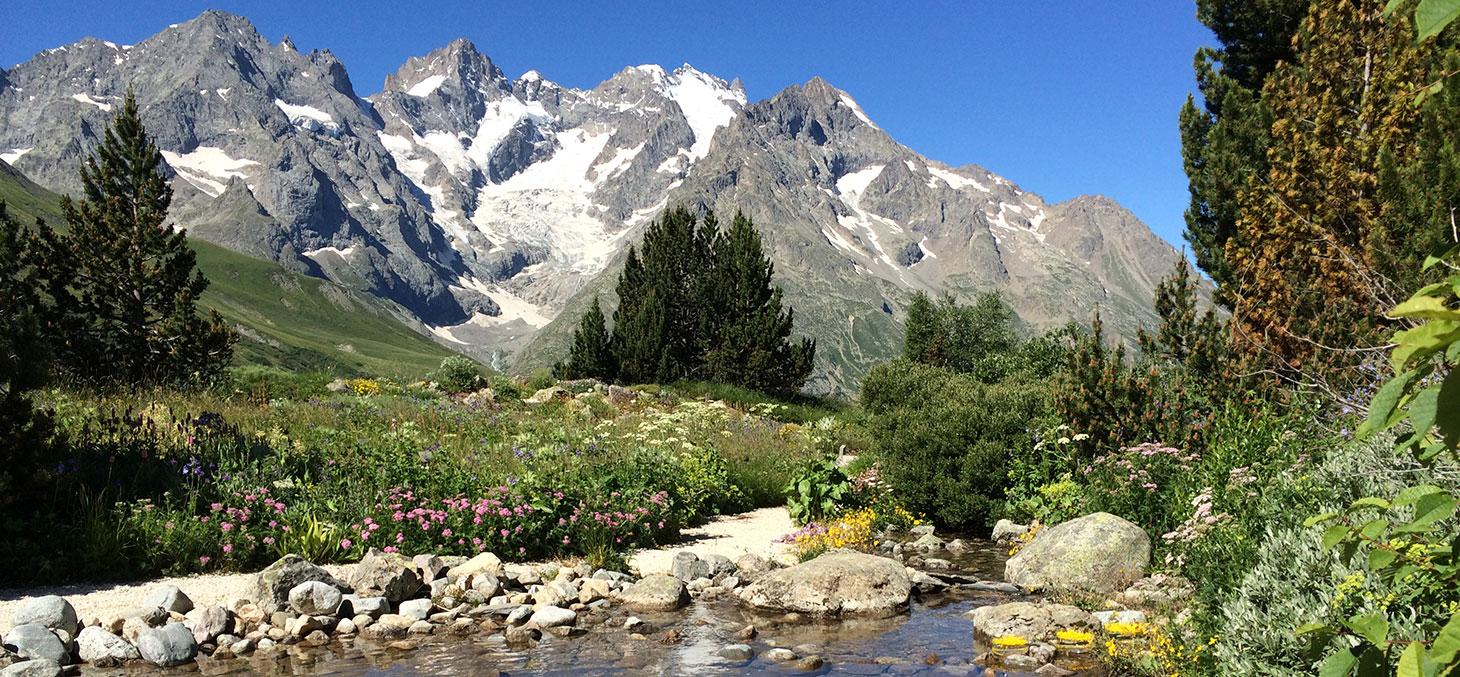 Jardin botanique alpin du Lautaret